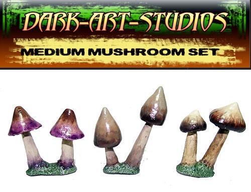 med-mushrooms