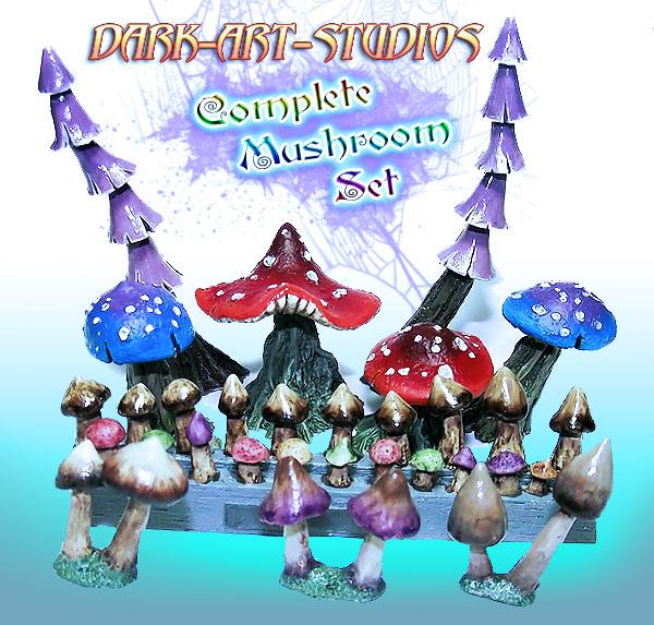 mushroom-complete-set001